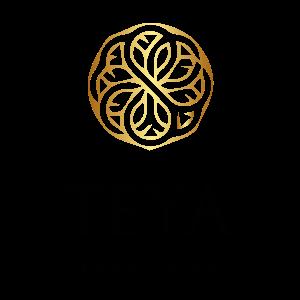 logo-teya